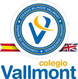 Logo-Vallmont-vectorial